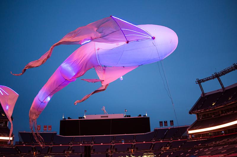 IPW Balloon Whale